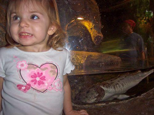 Dallas Aquarium 055-2