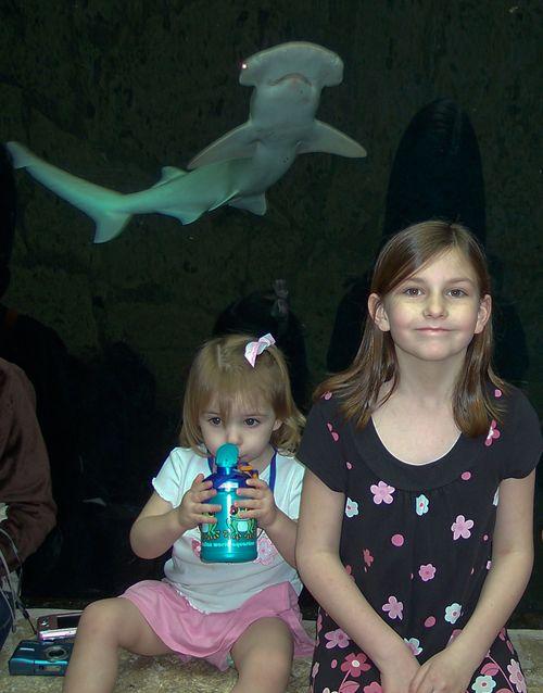 Dallas Aquarium 093-2